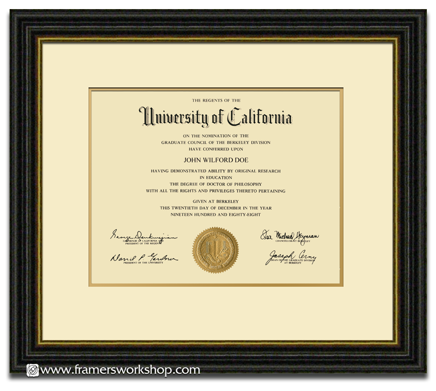 certificate special option 3 sample - Discount Framing