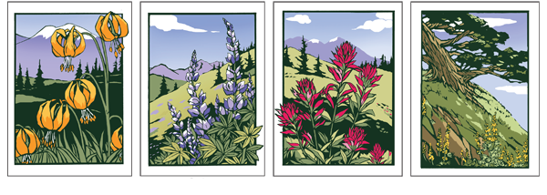 Four new Note Cards from Yoshiko Yammamoto_ Tiber Lilly_ Lupines_ Indian Paintbrush and Coastal Cypress