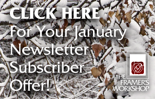 Click HERE for your Newsletter Subscriber Offer