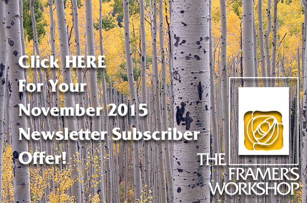 Click HERE for your November 2015 Newsletter Subscriber Offer_